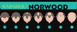 κλιμακα Norwood